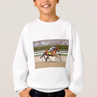 Long Haul Bay Sweatshirt