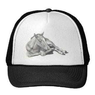 LONG-LEGGED FOAL: HORSE: PENCIL: REALISM TRUCKER HAT