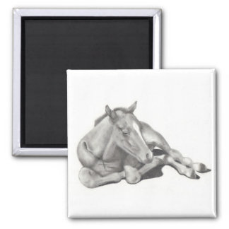 LONG-LEGGED FOAL: HORSE: PENCIL: REALISM SQUARE MAGNET