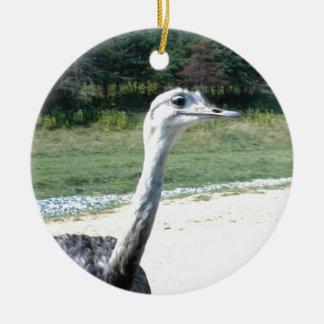 Long Neck Ostrich Profile Round Ceramic Ornament
