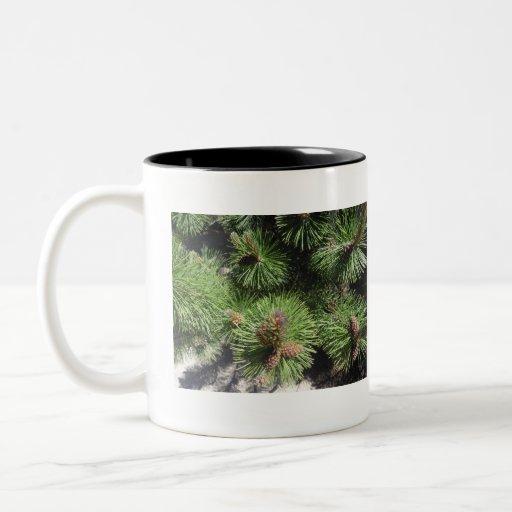 Long Needled Pine Mug