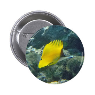 Long Nose Butterfly Fish 2 Inch Round Button