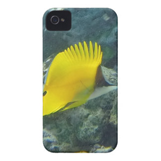 Long Nose Butterfly Fish Case-Mate iPhone 4 Cases