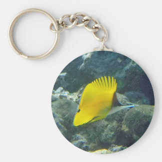 Long Nose Butterfly Fish Key Chain