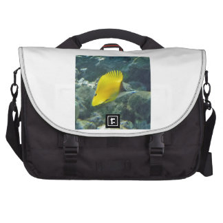 Long Nose Butterfly Fish Laptop Bags