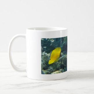 Long Nose Butterfly Fish Coffee Mugs