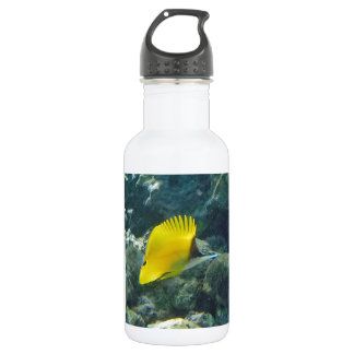 Long Nose Butterfly Fish 18oz Water Bottle