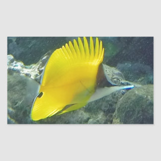Long Nose Butterfly Fish Rectangle Sticker