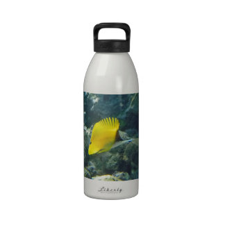 Long Nose Butterfly Fish Drinking Bottles