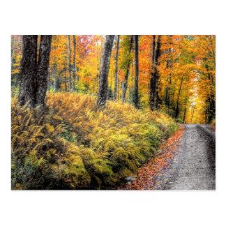 Long Pond Road Postcard