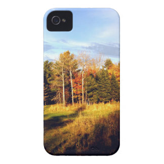 Long Shadows iPhone 4 Cases