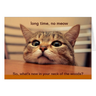 Long Time, No Meow Card