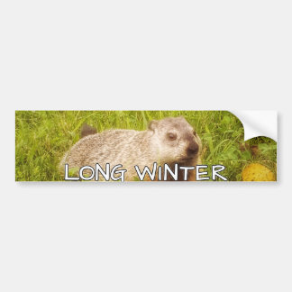 Long winter bumper sticker