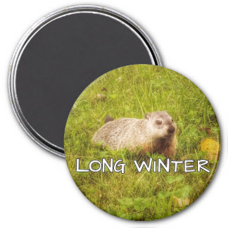 Long winter magnet