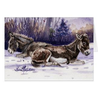 Long Winter's Nap Burro Blank Card