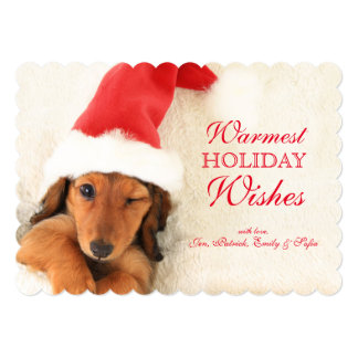 "Longhair Dachshund Puppy Winking 5"" X 7"" Invitation Card"
