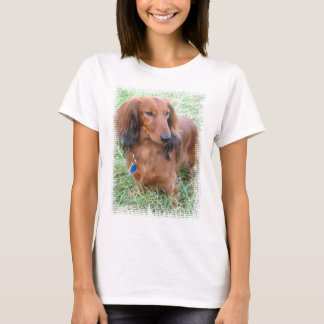 Longhaired Dachshund Ladies Fitted T-Shirt