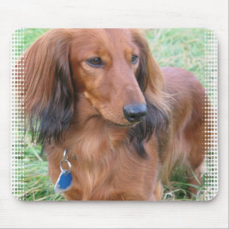 Longhaired Dachshund Mouse Pad