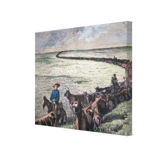 Longhorn cattle drive from Texas to Abilene, Kansa Canvas Print