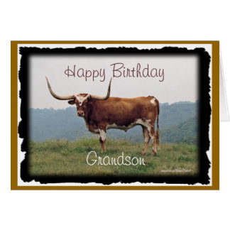 Longhorn on a hill-customize-any occasion card