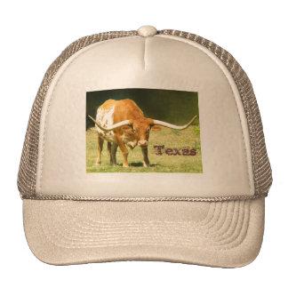 Longhorn Texas Trucker Hat