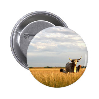 Longhorns on the open range 2 inch round button