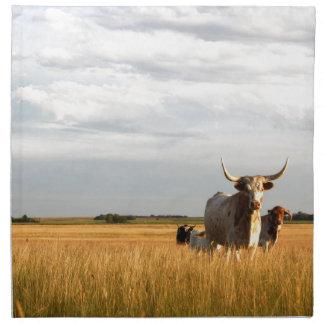 Longhorns on the open range napkin