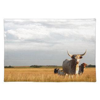 Longhorns on the open range place mats