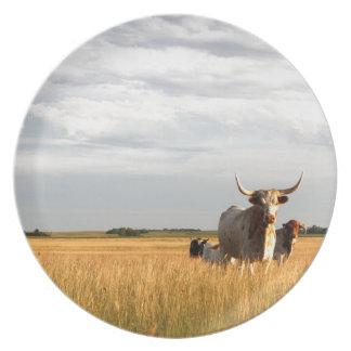 Longhorns on the open range plate