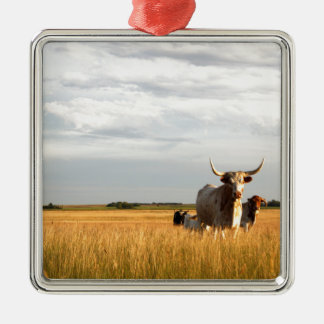 Longhorns on the open range Silver-Colored square ornament