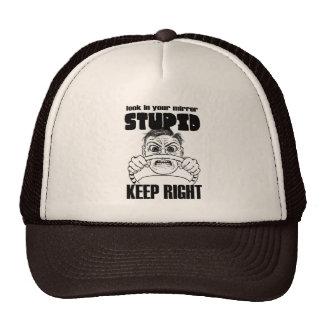 Look In Your Mirror Stupid cap Hat