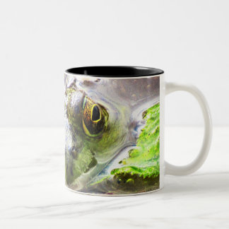 Look into my eyes and you sip your coffee Two-Tone coffee mug