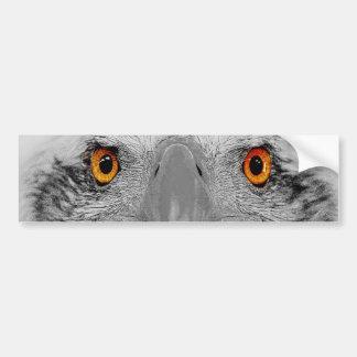 Look into my eyes bumper sticker