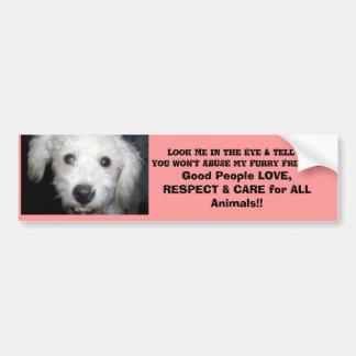 Look Me In The Eye! Doggie Message Bumper Sticker
