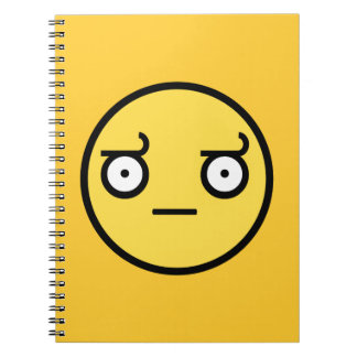 Look of Disapproval Smiley Face Notebooks