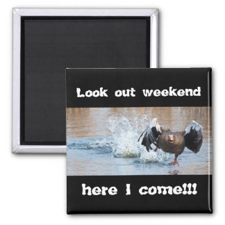 Look out weekend, here I come! Magnet