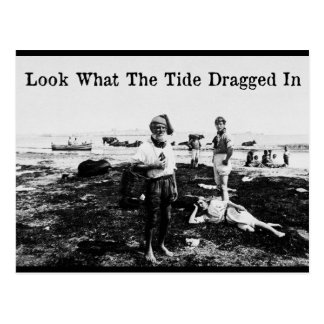 Look What The Tide Dragged In - Postcard