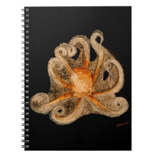 Looking for a Hug Notebook (80 Pages B&W)
