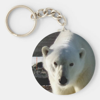 Looking into the eye of a Polar bear Keychain