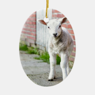 Looking lamb stands near brick wall ceramic oval ornament