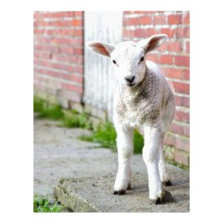 Looking lamb stands near brick wall letterhead