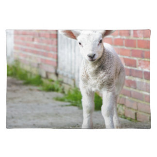Looking lamb stands near brick wall placemats