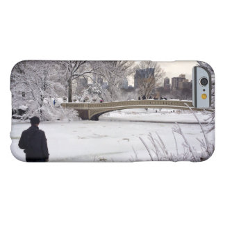 Looking Out Over A Frozen Pond Barely There iPhone 6 Case