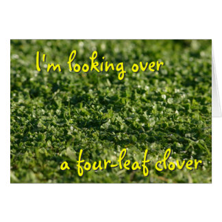 Looking over a clover St Pat card