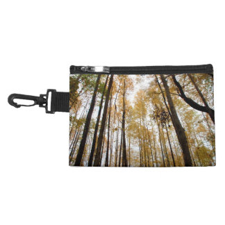 Looking Up at Tall Skinny Trees During Fall Accessory Bags