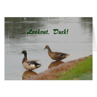 Lookout.  Duck! Birthday card