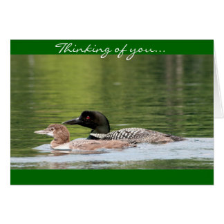 Loon and baby - thinking of you card