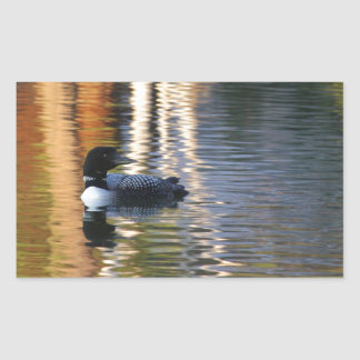 Loon at sunrise sticker