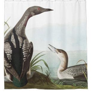 Loon Birds Audubon Wildlife Shower Curtain