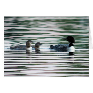 Loon Family Greeting Card
